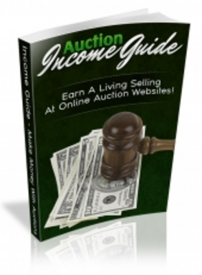 Product picture Auction Income Guide